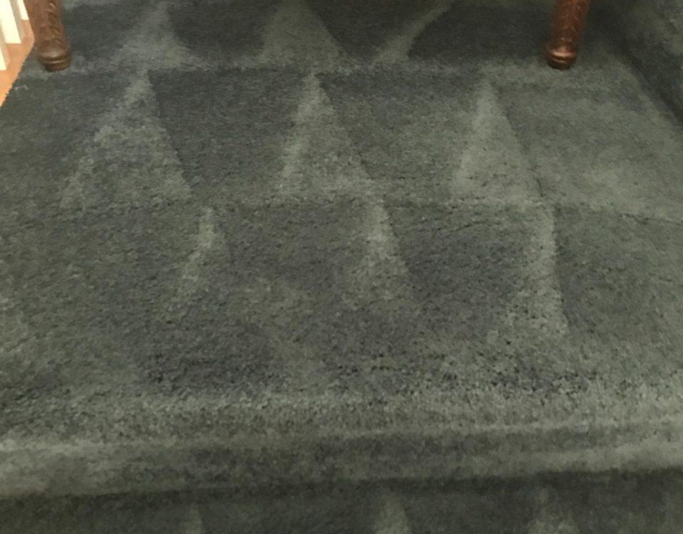 carpet cleaning san clemente california